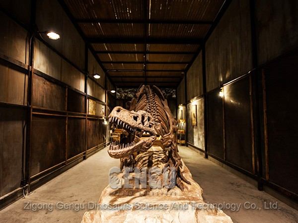 Fossils: Real Dinosaur Fossils For Sale