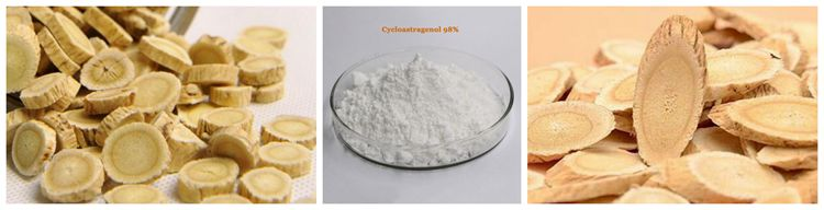 SOST Best Price Astragalus Root Extract Cycloastragenol 98%