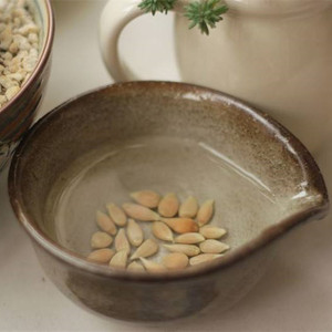 S129 High quality nature fruit agriculture Lemon Tree Seeds for Sale