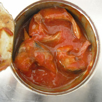 supply OEM brand canned mackerel in tomato sauce