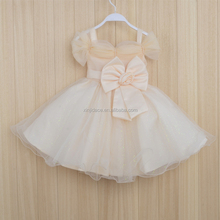 Hot selling pretty new design princess frock 2 year old girl dress