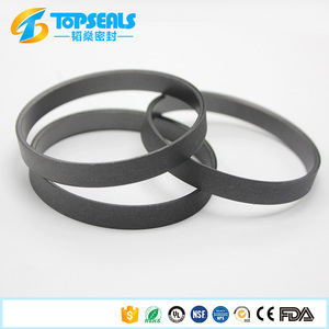 Graphite Filler Ptfe Gaskets / Ptfe Back Up Ring