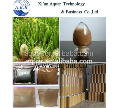 High Quality Free sample Manufacturer supply Natural Slimming Powder 10:1 Mexican Cactus Plants
