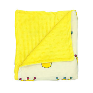 Minky Blanket Baby Weighted Blanket Mink Warm Blanket