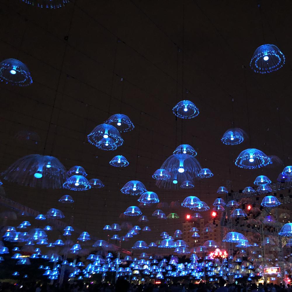 Beautiful Fiber Optic Jellyfish Light For Holiday Christamas Decoration Christmas Product On