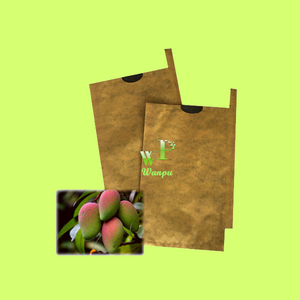 Fruit mango protection covering paper bag manufacturer and supplier