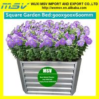 Pot plant, steel flower pot, good container gardening idea