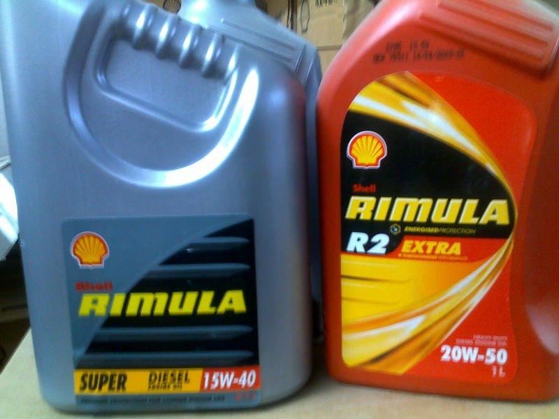 Shell Rimula Series