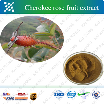 High Quality Cherokee Rose Fruit Extract and Rose Eggplant Extract Powder 30%
