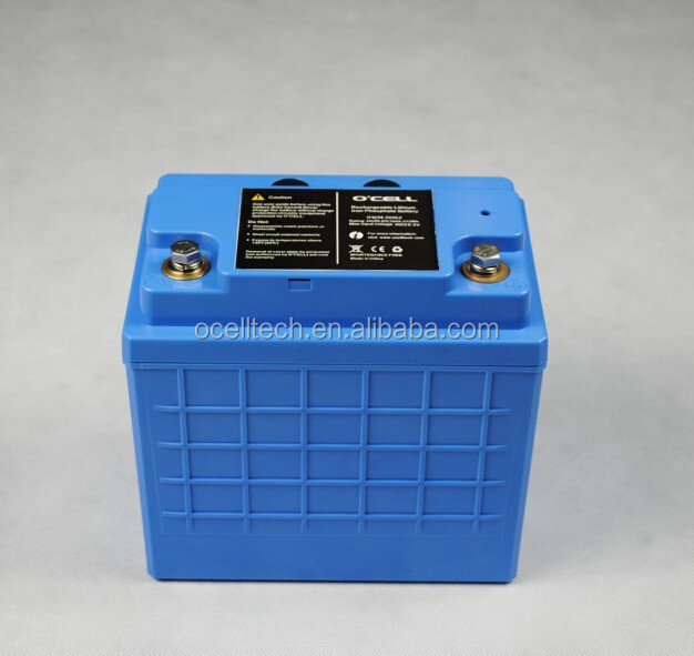 LiFePo4 lithium battery 12V 100ah/ 24V 50Ah