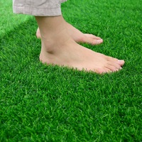 China Professional cheap sports artificial grass used for soccer lawn grass seed