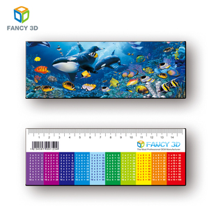 Fancy 3D Wholesale Products Custom Design Plastic 3D Lenticular Printable Parallel Rulers