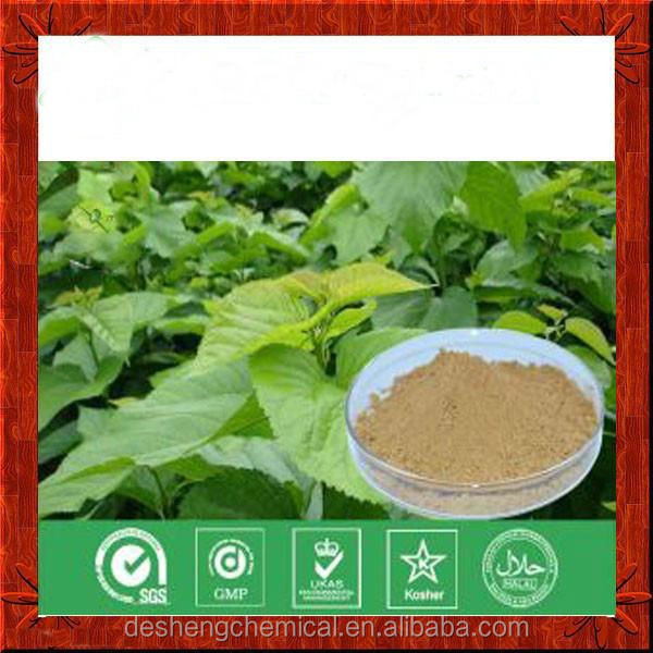 Mulberry Leaf Extract.organic mulberry leaf p.e..