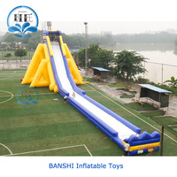 Professional supplier customized giant double lanes inflatable slide, giant inflatable water slide for adult