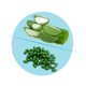 GMP Approved Health and Beauty Product Natural Aloe Vera extract softgel capsule