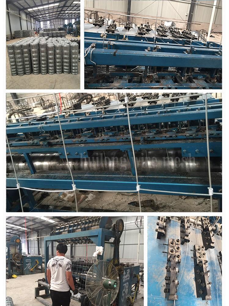 Wholesale Australian boer goat farm equipment factory direct ...