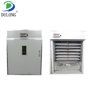 DLF-T10 widely used in india ostrich egg incubator good price for sale