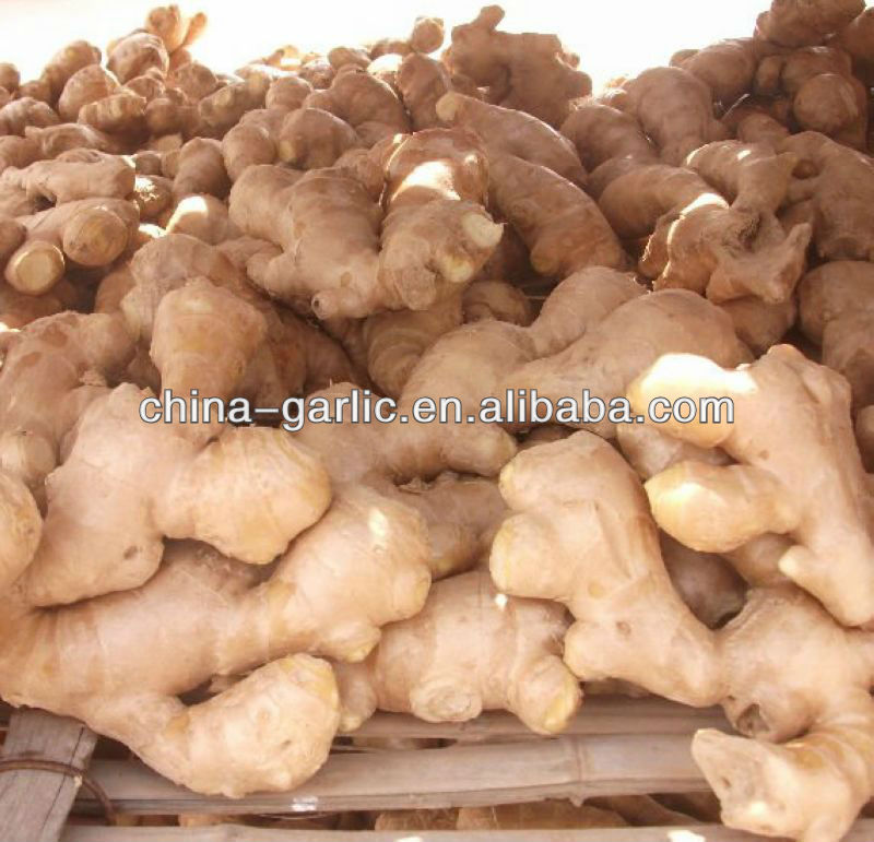 Air Dried Ginger in China