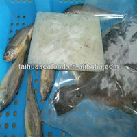 marine fresh food and tropical fish online