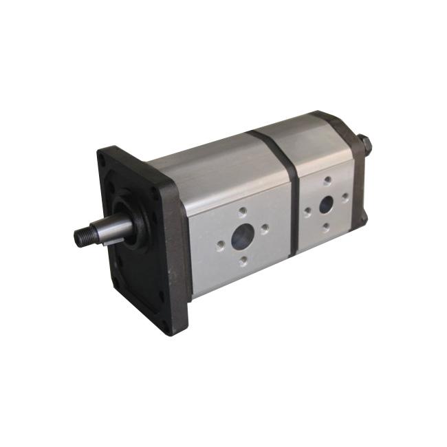 double hydraulic gear pump