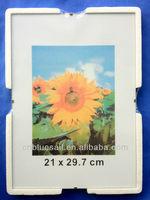 4x6 Clip Frame, glass A4 frames, sunflower frameless frame (est 1994)