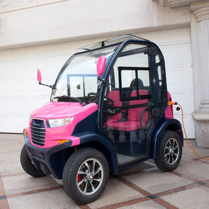 Low Speed Vehicles >> Lvtong Brand 2 Seater Low Speed Vehicle With Closed Door
