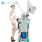 19 IN 1 multifunctional beauty machine Facial Steamer beauty salon equipment