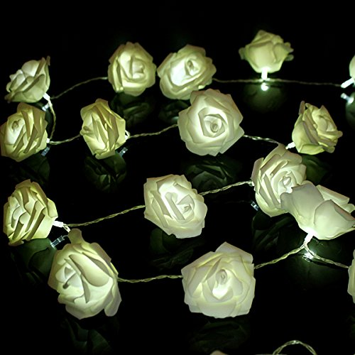 Hot selling product CE Rohs UL 12V holiday decoration patio string light with rose flower