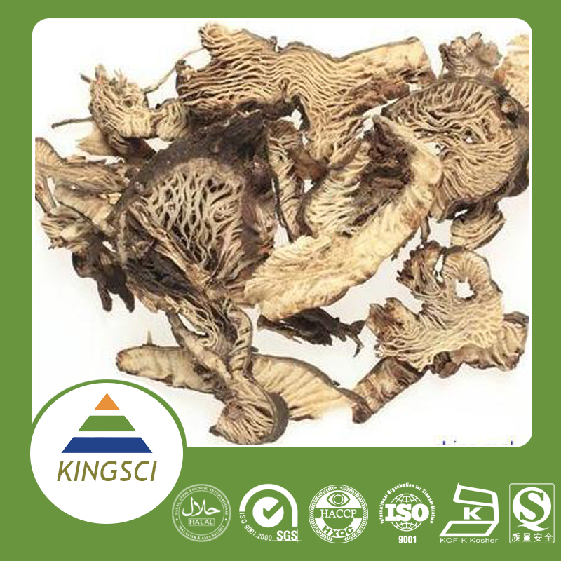 Hot Sell China Herbal Black Cohosh Root Extract Health care product