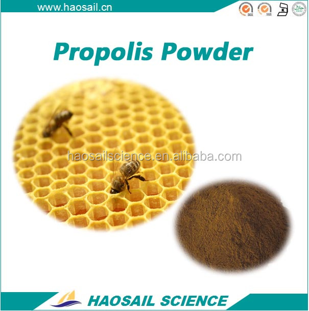 High Quality propolis powder, propolis, bee propolis