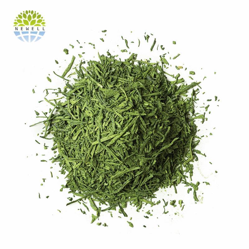 Sample free nice looking green tea powder 3in1 in stock - 4uTea | 4uTea.com