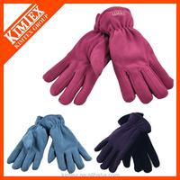 2017 Promotional Custom Winter Polar Fleece Gloves