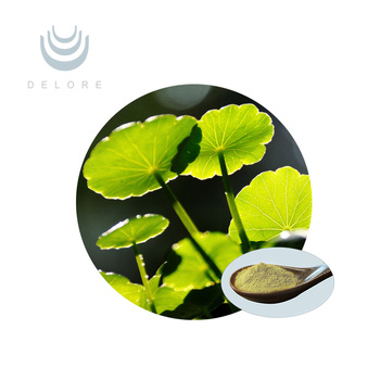 High Quality of Gotu Kola Extract /Centella Asiatica Extract Asiaticosides Powder