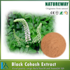 High Quality Black Cohosh Extract Powder / Cimicifuga Foetida L.