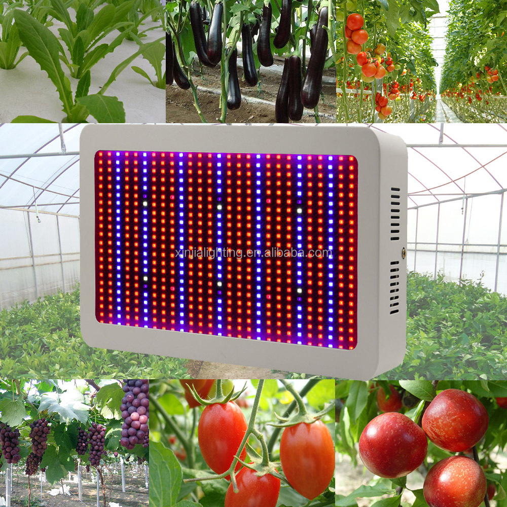 Wholesale ZW0112 600W Square LED Grow Lights with full spectrum ...