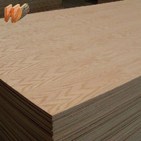 4 ft* 8 ft Best Quality Eucalyptus Core Plywood with Cheap Price