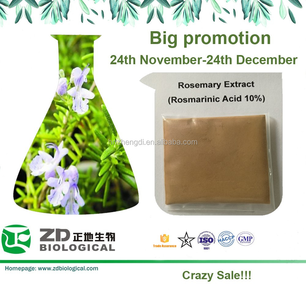 Hot Sale Plant Extract Powder Rosemary Extract Low Price