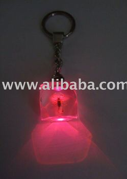 Novel Led Keychains e5e45da7b55b