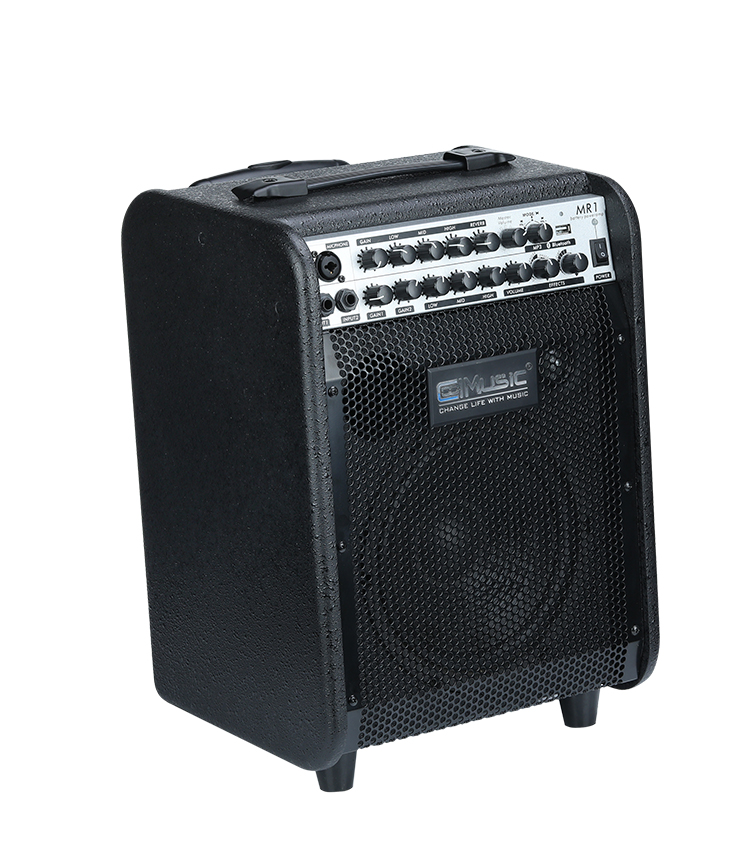 60W Multifunction Keyboard Speaker Vocal and Power Guitar Amplifier