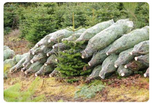 Christmas Tree Netting, Christmas Tree Netting Suppliers And Manufacturers  At Alibaba.com