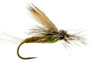 RiverBum EC Caddis, Green Fishing Fly EC Caddis, Green, Pack of 3