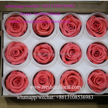 Export How To Preserve A Rose In Jar From Yunnan Flower Company For Bouquets