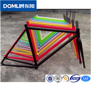 Customized design alloy fixed gear dnm front fork