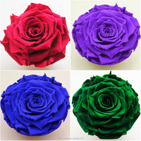 Beautiful fresh cut flower preservative at reasonable prices , small lot order available