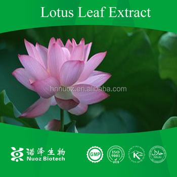 100 Nature Product Lotus Extractlotus Root Powderfresh Lotus
