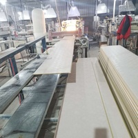 factory price PVC wall panel china