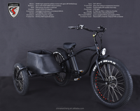 electric battery operated tricycle electric tricycle with lithium battery