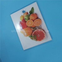 antibacterial multifunction bread pizza cutting board antibacterial glass cutting board for fruit and vegetable