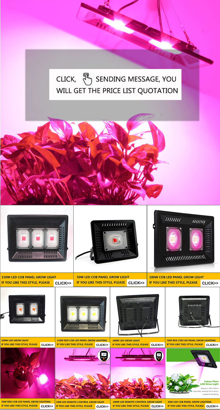 Hot Sales 3gp King 50w Led Grow Light Shenzhen Miken Photoelectric Co Ltd
