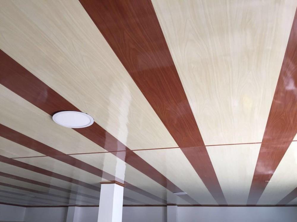Techos en pvc cielo raso de pvc interior paneles de pared for Paneles de pvc para banos